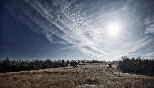 Paths by Mark Wagoner