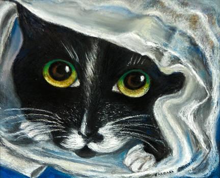 Paul's Cat by Barbara Barry-Nishanian