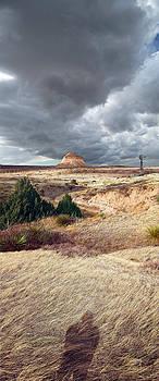 Pawnee Grasslands by Ric Soulen