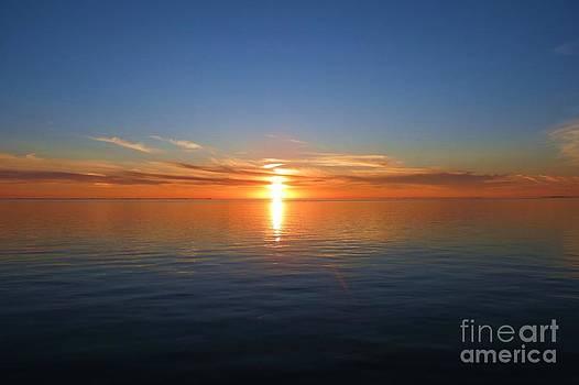 Peace On The Horizon  by E Luiza Picciano