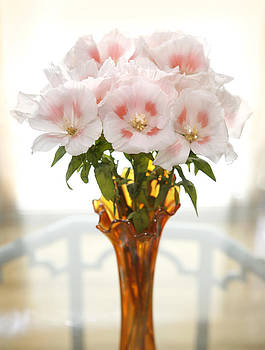 Marilyn Hunt - Peachy Gladiolas