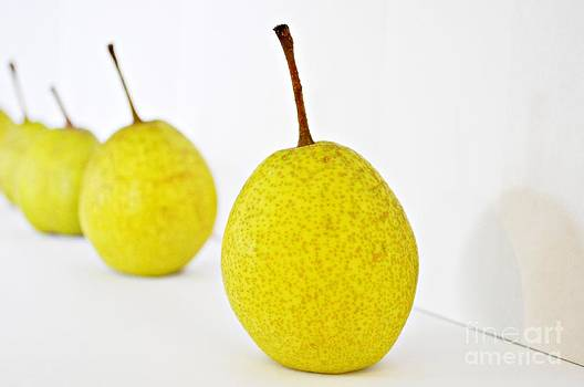 Pears in a Row by Heather Beck