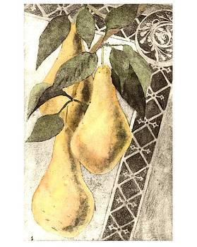 Pears by Sara Bell