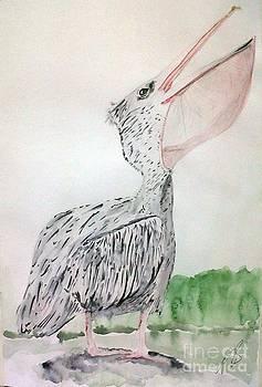 Pelican I. by Paula Steffensen