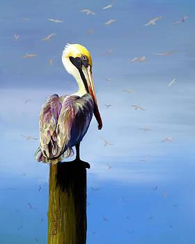 Pelican Perch by Suni Roveto