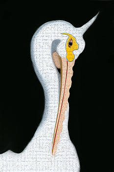 Pelican by Yosi Cupano