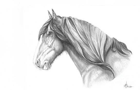 Pencil Horse by Murphy Elliott