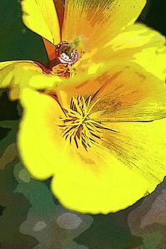 Gilbert Artiaga - Pencile Poppy Art