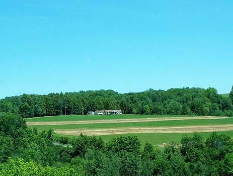 Pennsylvania Landscape by Lila Mattison