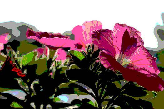 Petunia by Bob Whitt