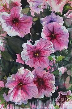 Petunia Cascade by Helen Shideler
