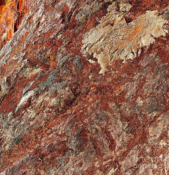 Phoenix Stone by Michael Wyatt