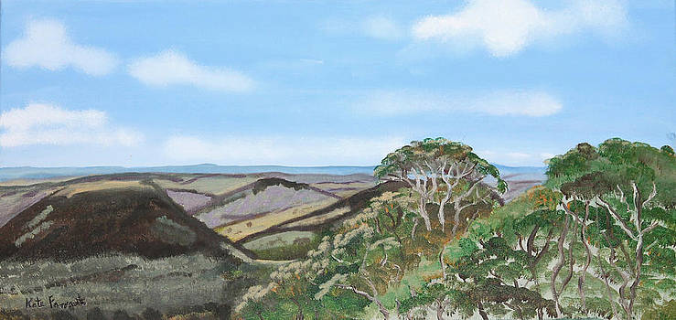 Kate Farrant - Picnic Point View