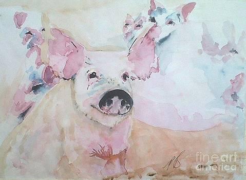 Pig I. by Paula Steffensen