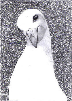 Pigeon Pose by Di Fernandes