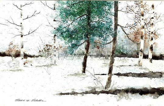 Pine Woods by Steven W Schultz