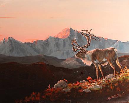 Pink Alaska by Scott Thompson