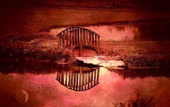 Emily Stauring - Pink Bridge