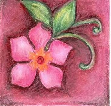 Pink Flower by Judith Correa
