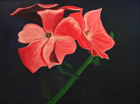 Pink Flowers by Roxanne Weber