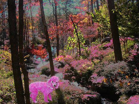 Anne Cameron Cutri - Pink Poodle Paradise