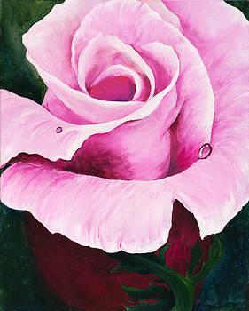 Pink Rose by Carol McLagan