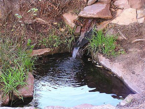 FeVa  Fotos - Pipe Spring