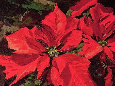 Pointsettia Flower by J R Baldini