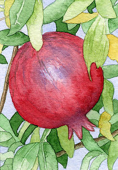 Pomegranate in tree by Eunice Olson
