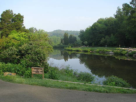 Pond at Bernheim by Cammie Keller