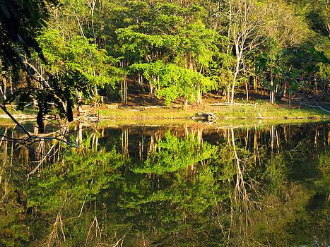 Kurt Van Wagner - Pond Reflection Guatemala