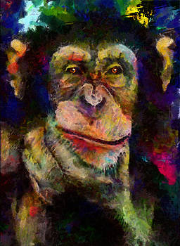 Pondering Chimp by Christopher Lane