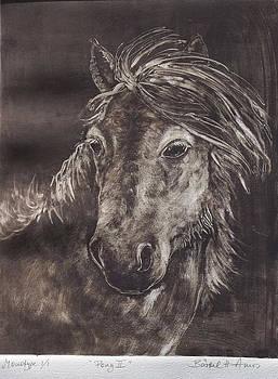 Pony II by Barbel Amos