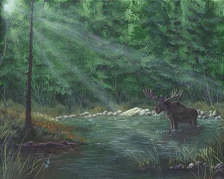 Pool of the Forest King by Kent Nicklin