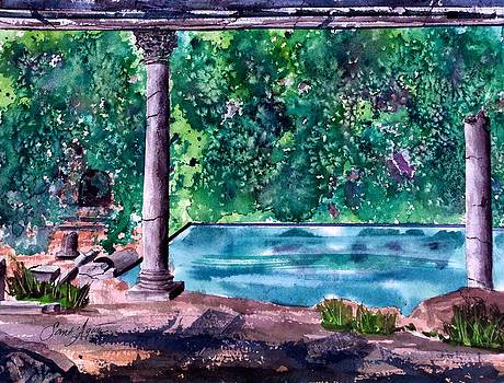 Frank SantAgata - Poolside