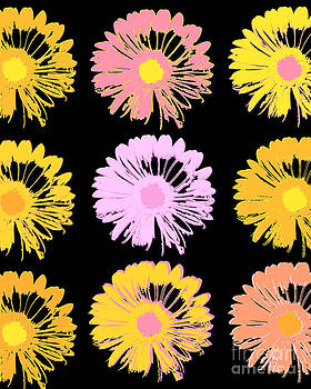 Ricki Mountain - Pop Art Floral I -Daisies -II