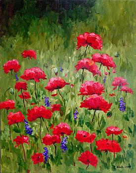 Poppies In A Meadow III by Glenda Cason
