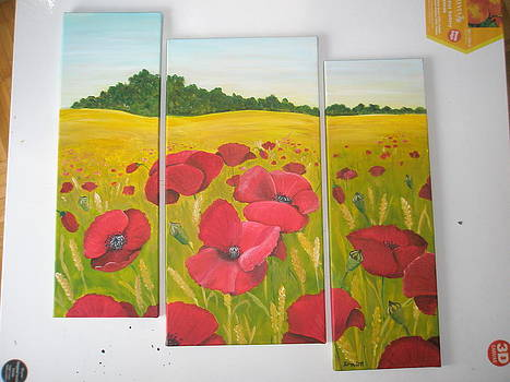 Poppy field by Ema Dolinar Lovsin