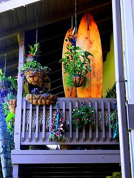 Porch Surf by Sharon Farris