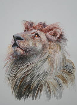 Portrait of a King by Jan Lowe
