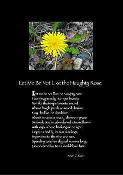 Poster Poem - Let Me Be Not Like the Haughty Rose by Poetic Expressions