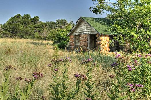 Prairie Cabin by Terry Hollensworth-Rutledge