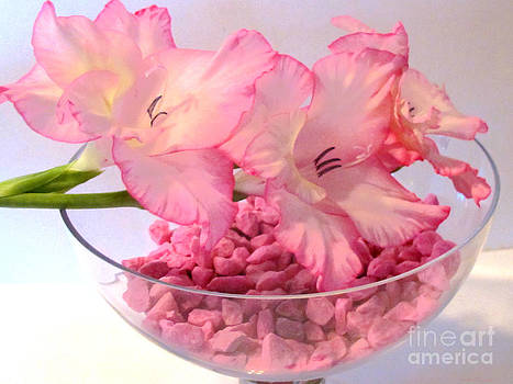 Pretty in Pink by Kathie McCurdy