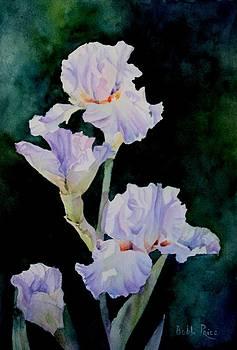 Pretty in Purple by Bobbi Price