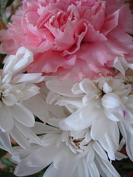 Pretty Pastel Petals by Yvonne Scott