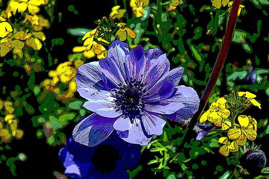 Proud Purple by Bob Whitt