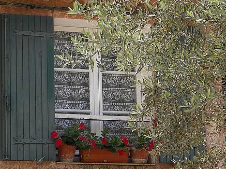 Provensale window by Manuela Constantin