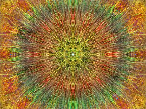 Psychedelic Grok by Lynzi Wildheart