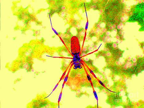 Psychedelic Spider by Genevieve Price
