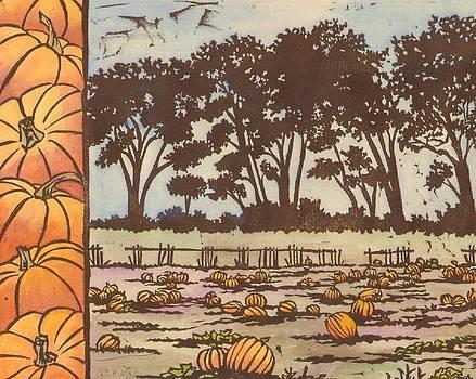 Pumpkin Field by Sara Bell